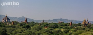 Bagan temples in panorama