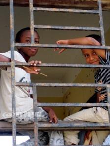 Children of Socotra