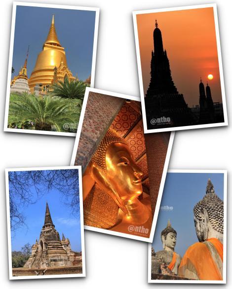 Kolase Thailand