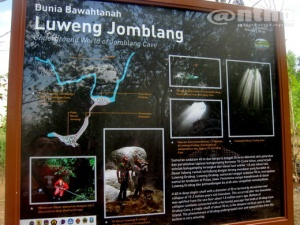 About Jomblang Cave